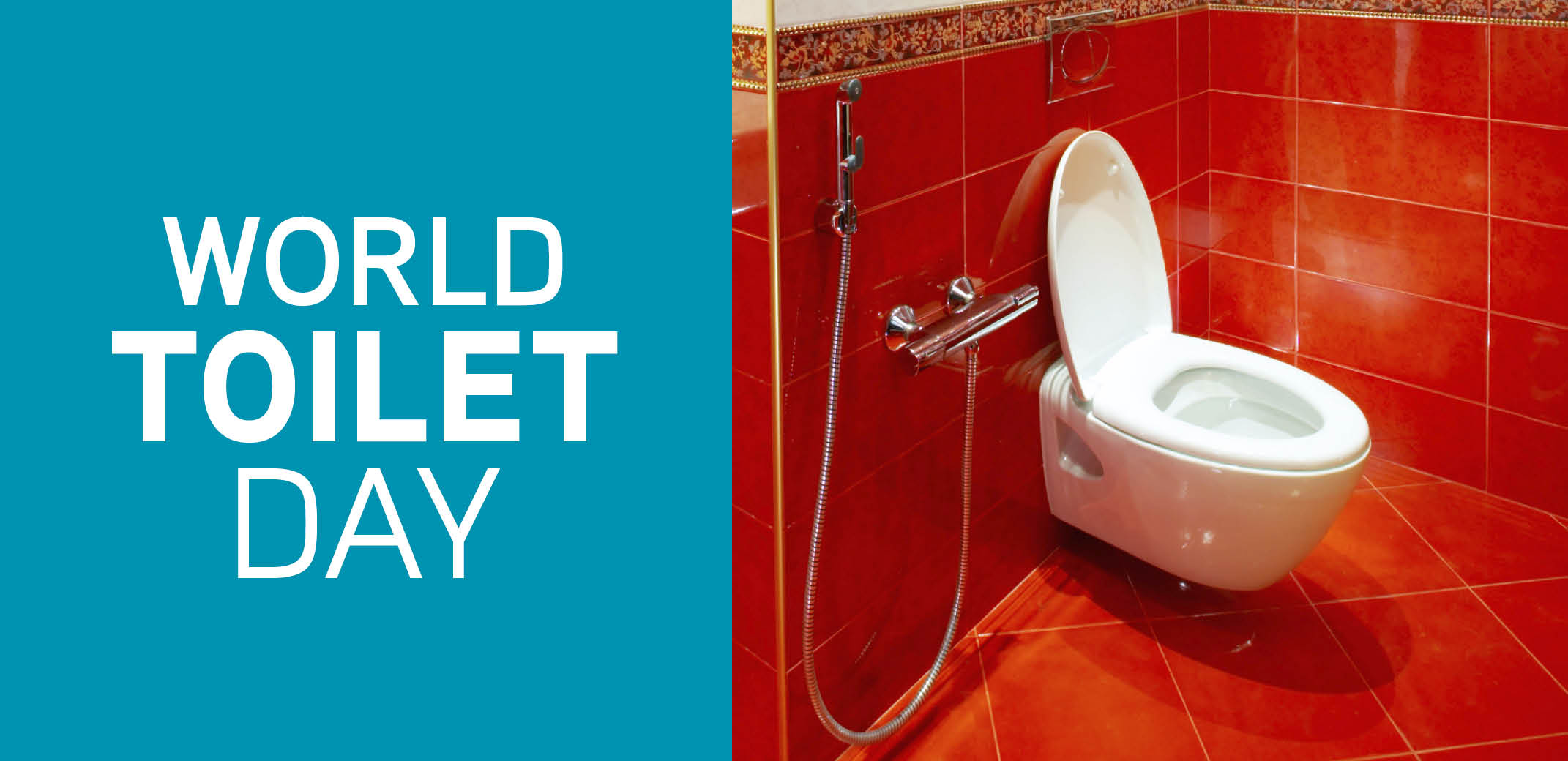 World Toilet Day Mr Rooter
