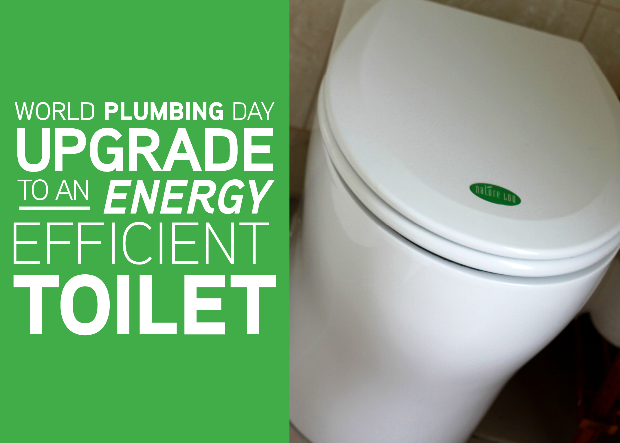 World Plumbing Day Upgrade To An Energy Efficient Toilet