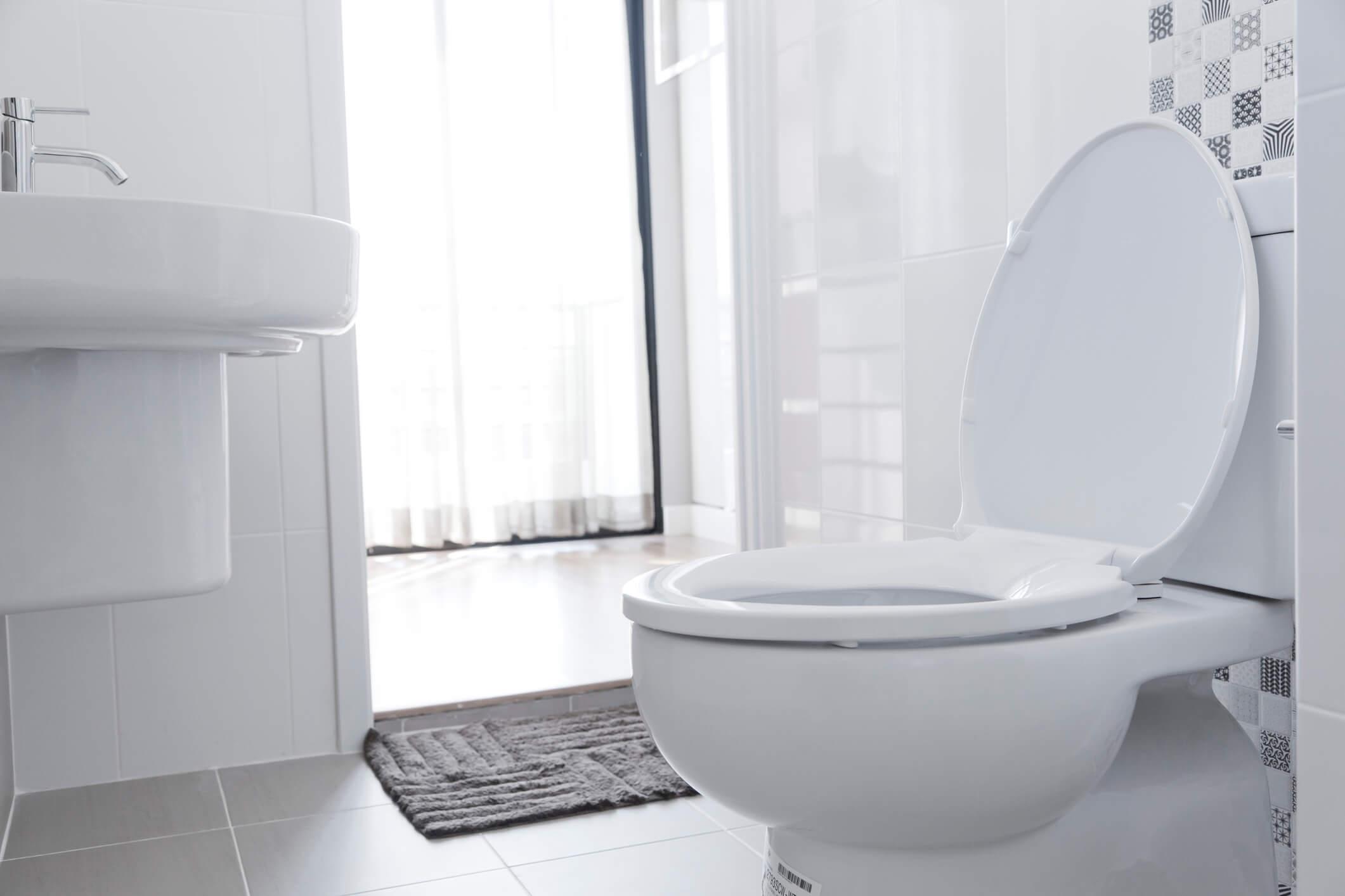 Understanding different types of toilets