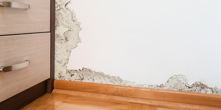 How To Find A Water Leak Inside A Wall