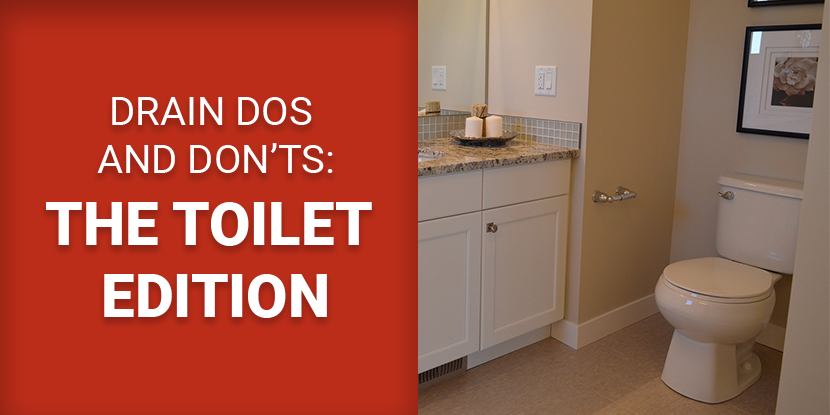 Drain Dos and Don\'ts: The Toilet Edition