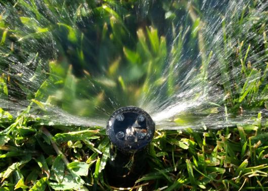 automatic sprinkler head