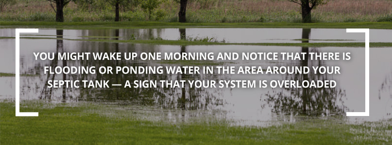 Flooded pond with text about septic tanks