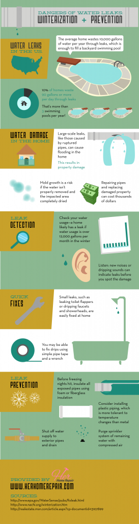 dangers of water leaks infographic