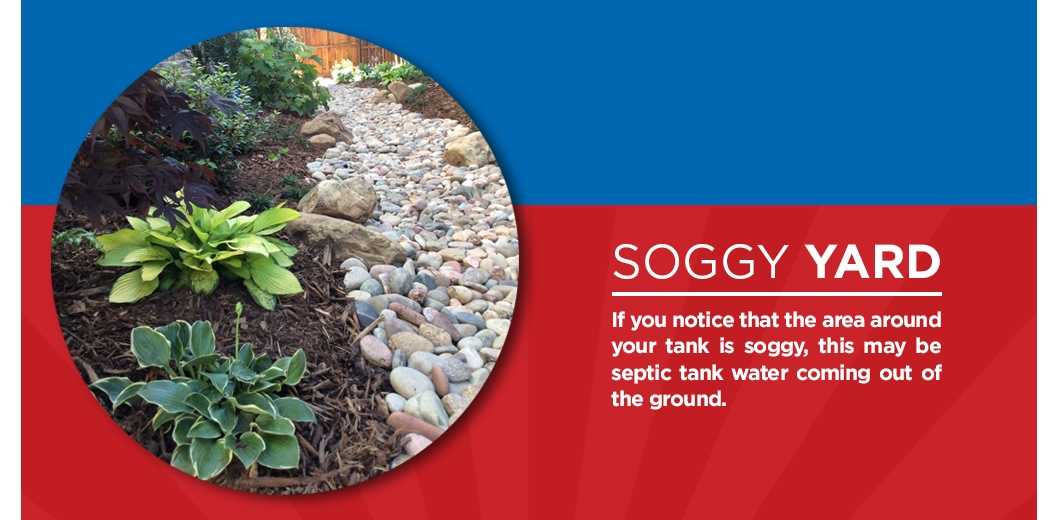 Landscaped yard with text about soggy yards
