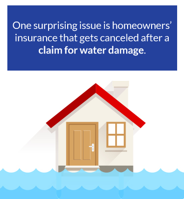 homeowners insurance cancels after water damage