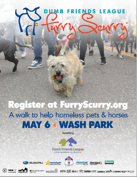 Furry Scurry Event Promotion