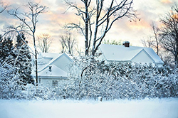 winter residential scene