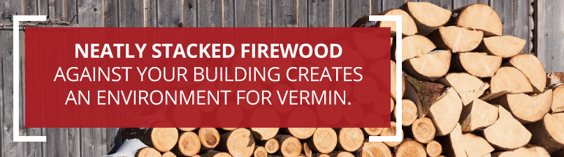 firewood stacks create vermin homes