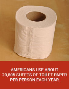 Americans Use 20,805 Sheets of Toilet Paper Per Year