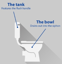 toilet bowl terminology