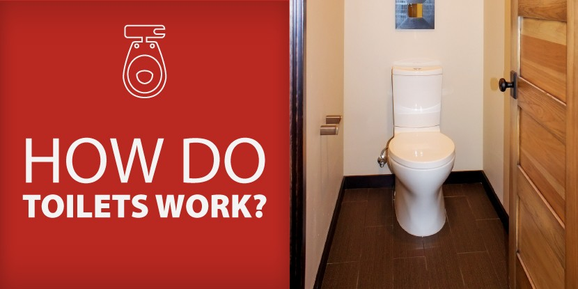 How Do Toilets Work Mr Rooter Plumbing