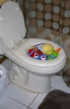 Toys in a Toilet Bowl