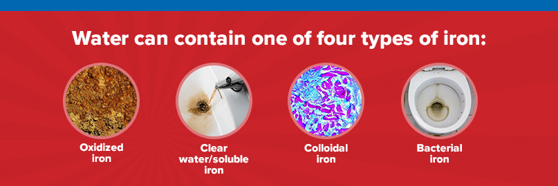 water can contain four types of iron